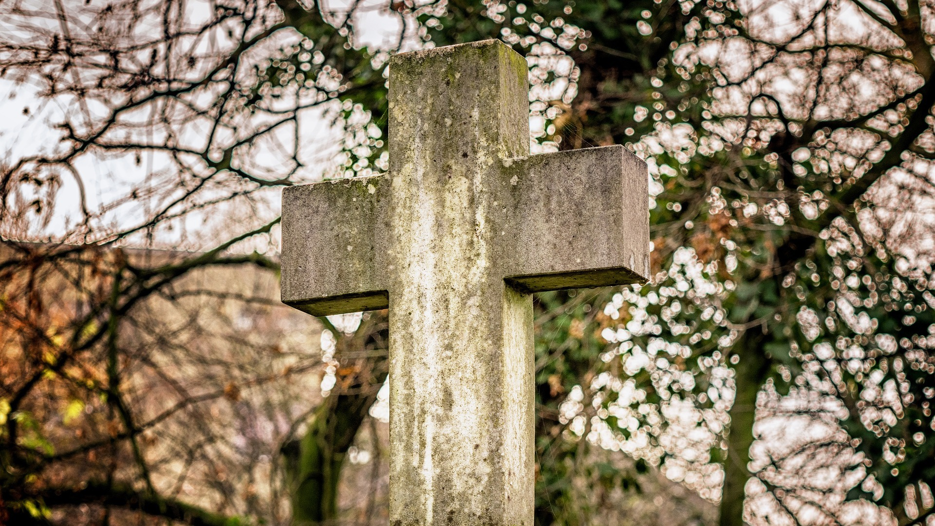 Christianity Promises Suffering and Persecution: Here's How