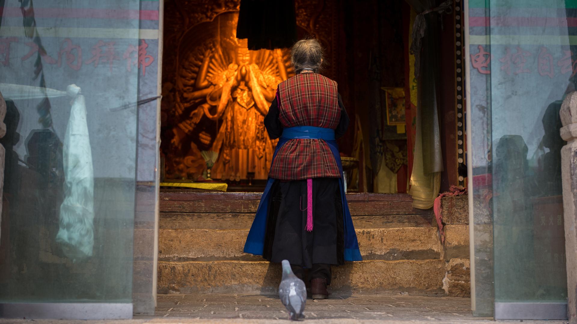 A Tibetan woman prays in a Buddhist temple.